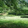 山根公園(新居浜)の花園