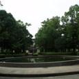梅雨の中の鷹丸の公園にて