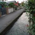家の近く、清流の川