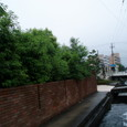 6月雨の庭