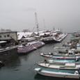 1月22日大雪のあとの西条の港