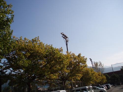 11月の鷹丸市民グラウンド