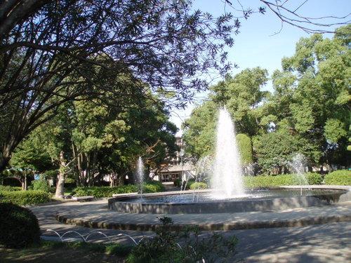 11月の鷹丸市民公園