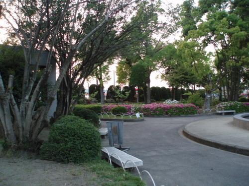 梅雨の鷹丸公園