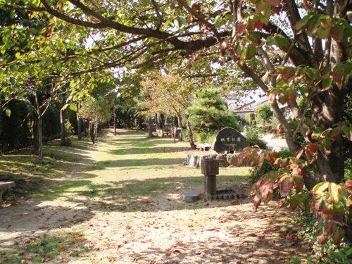 秋の町の公園