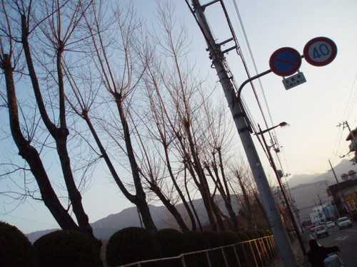 お正月の運動公園(鷹丸)グラウンド
