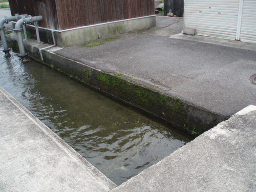 大雨のあとの家の前の川