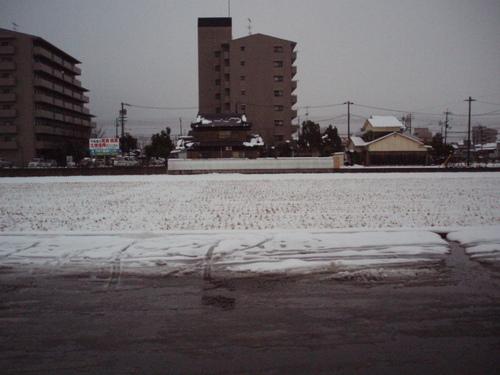 1月22日大雪のあとの田んぼ
