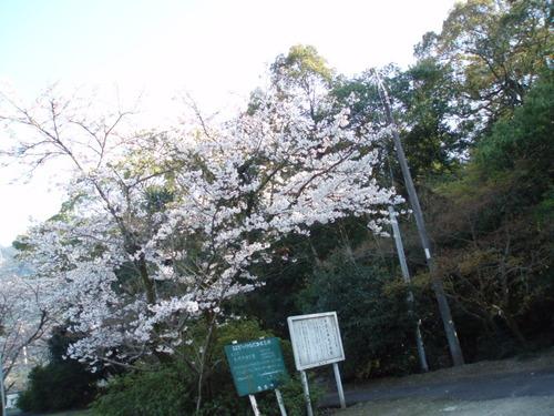 2008年伊曽乃神社の駐車場から中まで